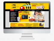 ginsao-site-internet-94-sas-ais-pene-alarme