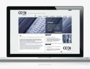 CCDI-creation-site-institutionnel-1