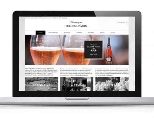 Site Internet Champagnes Selosse-Pajon