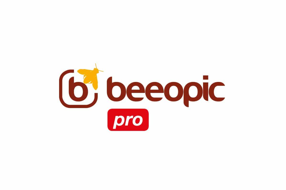 création-logo-apiculteur-pro-vente-matériel-apiculture-ginsao