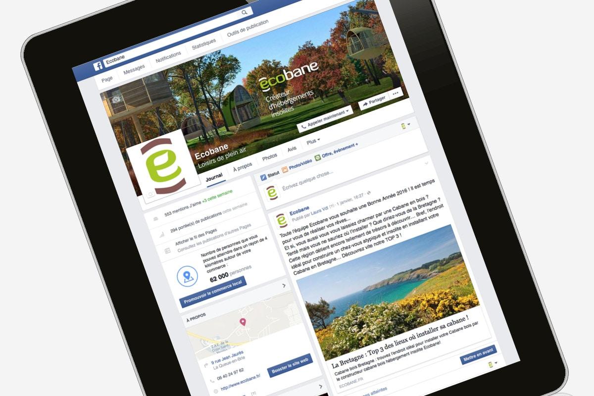 ginsao-agence-communication-ecobane-cabanes-bois-facebook